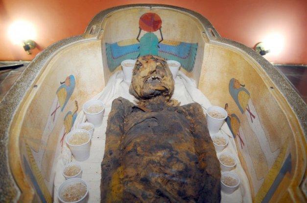 múmia Tothmea Museu Egípcio Curitiba